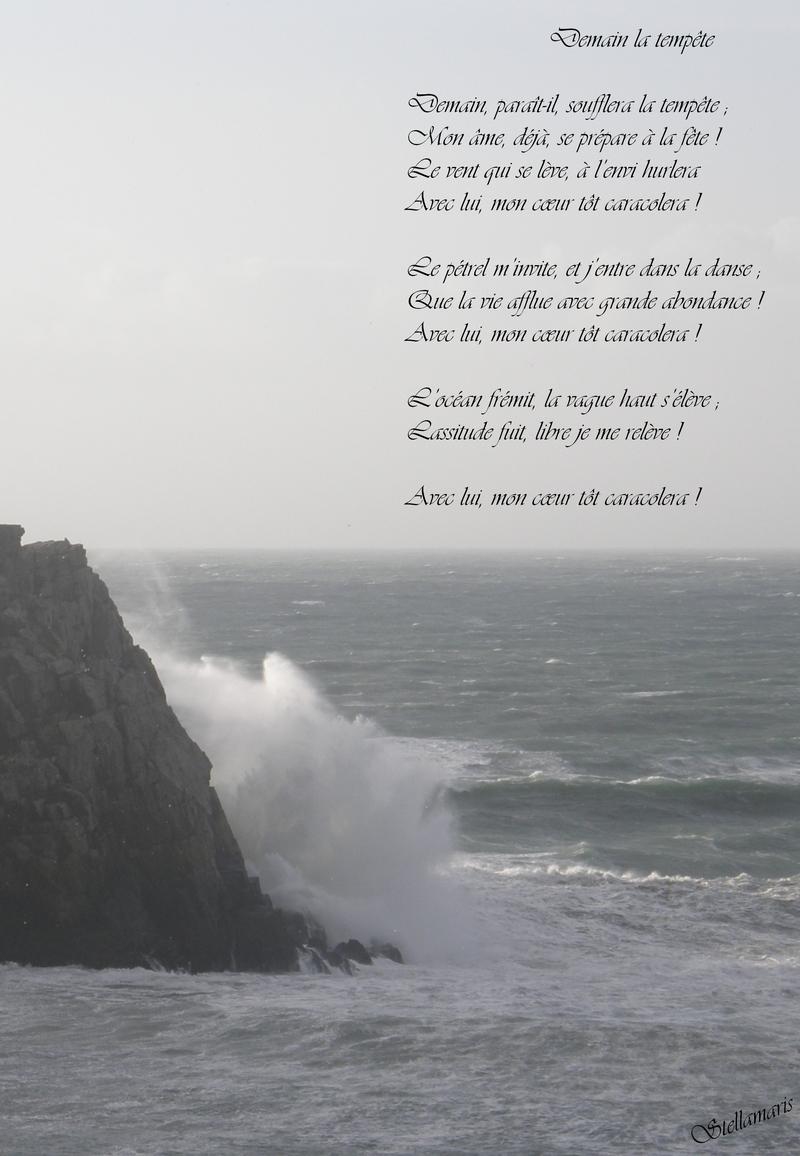 Demain la tempête / /Demain, paraît-il, soufflera la tempête ; / Mon âme, déjà, se prépare à la fête ! / Le vent qui se lève, à l'envi hurlera / Avec lui, mon cœur tôt caracolera ! / / Le pétrel m'invite, et j'entre dans sa danse ; / Que la vie afflue avec grande abondance ! / Avec lui, mon cœur tôt caracolera ! / / L'océan frémit, la vague haut s'élève ; / Lassitude fuit, libre je me relève ! / / Avec lui, mon cœur tôt caracolera ! / / Stellamaris